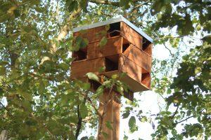 duurzaam en milieuvriendelijk voorbeeld van vleermuis en vogelkast